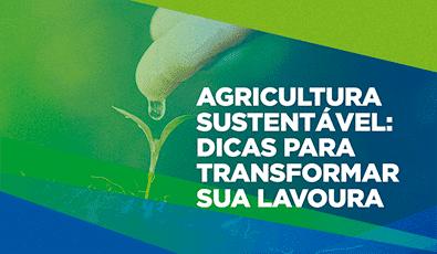 Agricultura sustentável: dicas para transformar sua lavoura